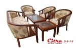 Citra 3111